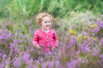 Little baby girl walking in purple autumn flowers in a field