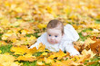 Adorable little baby playing in a park with yellow autumn leaves