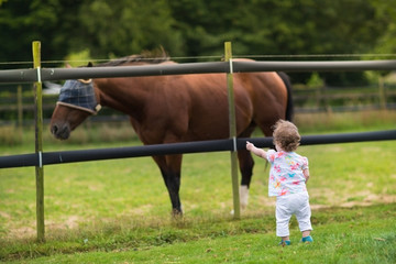 Adorable baby girl watching a horse on a farm at sunset