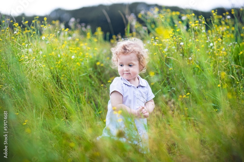 Baby girl with curly hair playing in a field of wild flowers