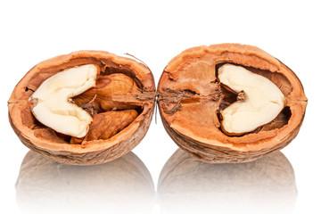 Chopped walnuts on white