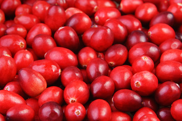 Raw Cranberries background