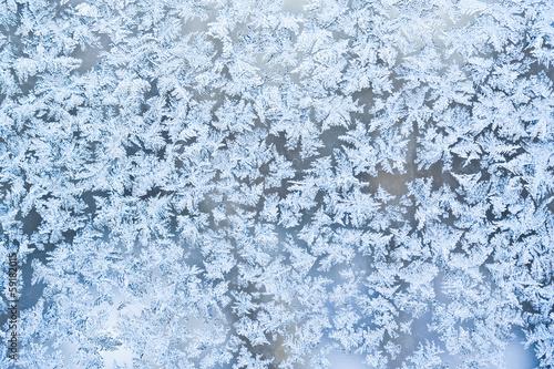 Foto op Aluminium Antarctica 2 Frost pattern