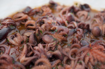 selection of small octopus for italian anti pasti