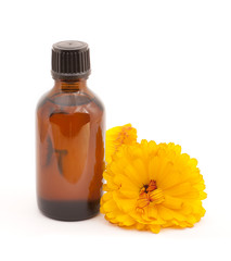 Cosmetic oil from marigold