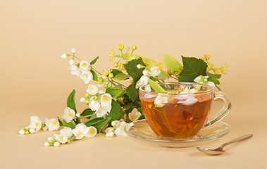 Cup of flower tea, jasmine and linden branches