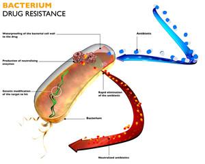 Resistenza dei batteri agli antibiotici.
