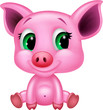 Cute baby pig cartoon