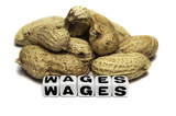 Peanuts and wages poster