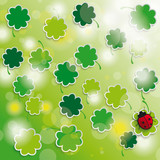 Spring card shamrock sunlights