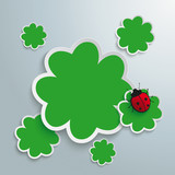 3 Green Shamrocks