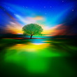 Nature background with sunrise and tree