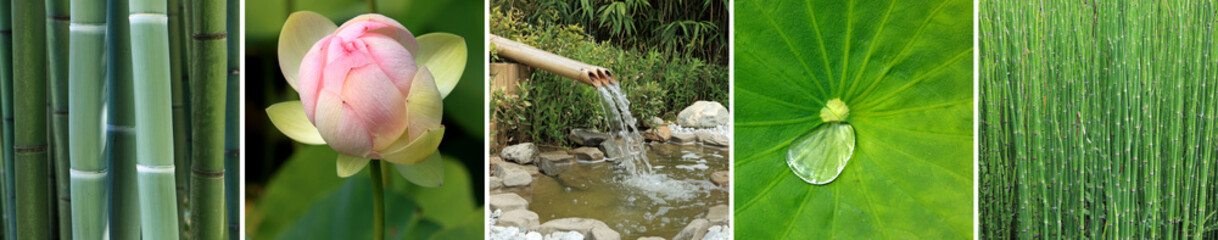 quintiptyque sur le thème du jardin aquatique