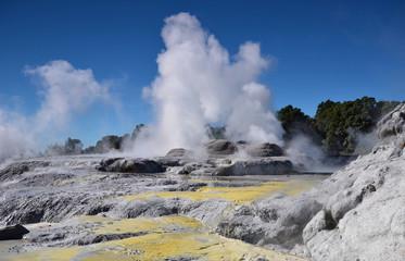 Whakarewarewa Valley of Geysers. New Zelandiiya.Geotermalny park