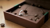 Grains of coffee served in a box with silver necklace