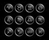 Zodiac signs glassy vector collection
