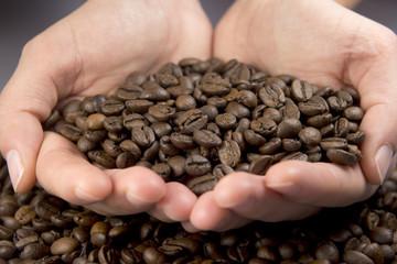 Manos con granos de café