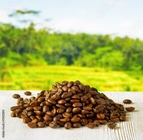 Coffee beans on highlands background