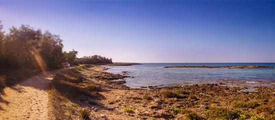 Costa salentina: riserva naturale di Torre Guaceto.-BRINDISI-