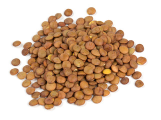 brown lentils isolated on white