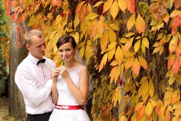 Piękna para młoda na jesiennym plenerze.