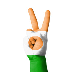 Hand making the V sign, Niger flag painted