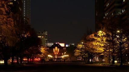 東京駅ライトアップと駅前広場の並木道の夜景 インターバル撮影
