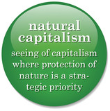 dictionary definition of the term Natural Capitalism