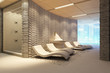 spa interior with ice fontain and chaise-longue. white model