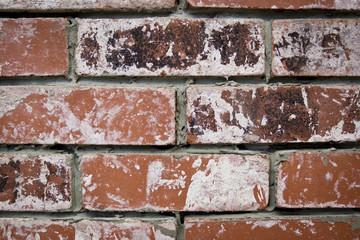 worn bricks texture backround