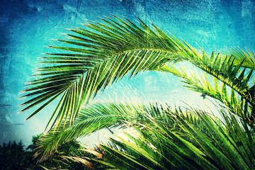 textured palm leaf