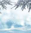 canvas print picture - winter background