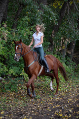 Equestrian romantic adventure