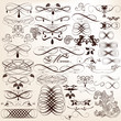 Collection of calligraphic vector design elements and page decor