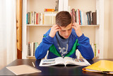 Male teenager concentrated studying