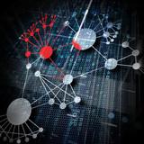 Ausbreitung im Netzwerk