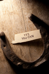 yes you can  inscription and  horseshoe over wooden background