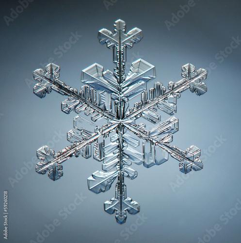Canvas Textures natural crystal snowflake macro