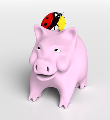 Ladybird saves money