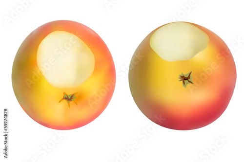 Realistic apples set. Isolated on white. Vectore