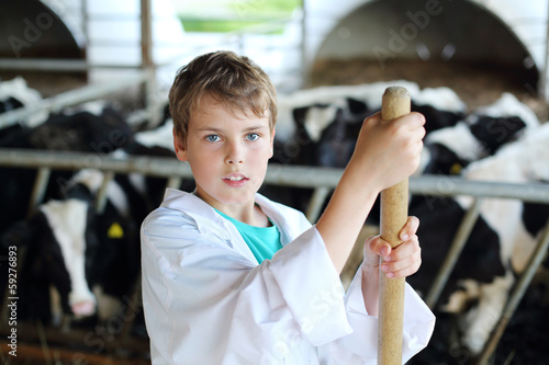 Boy in white robe stands with hayfork near small calves