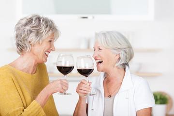 zwei seniorinnen genießen ein glas rotwein
