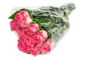 A bunch of pink roses in plastic foil on a white background