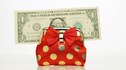 Dollars throw into a small purse