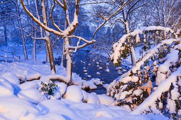 Winter scenery in snowy park of Gdansk, Poland
