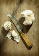 Kitchen knife with garlic
