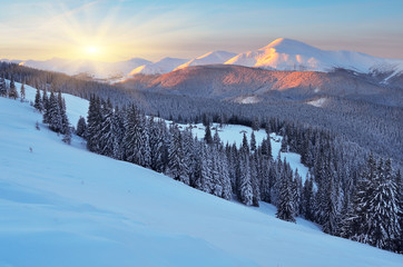 Dawn in winter in mountains