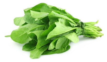 Spinach bundle