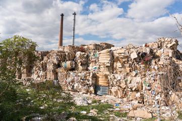 at dump site