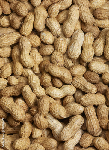 canvas print picture Peanut background
